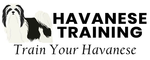 Havanese Training logo